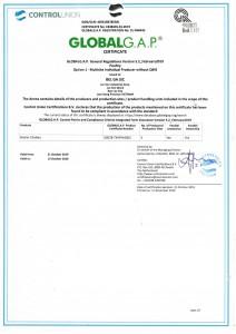 global-gap-certificate-2019