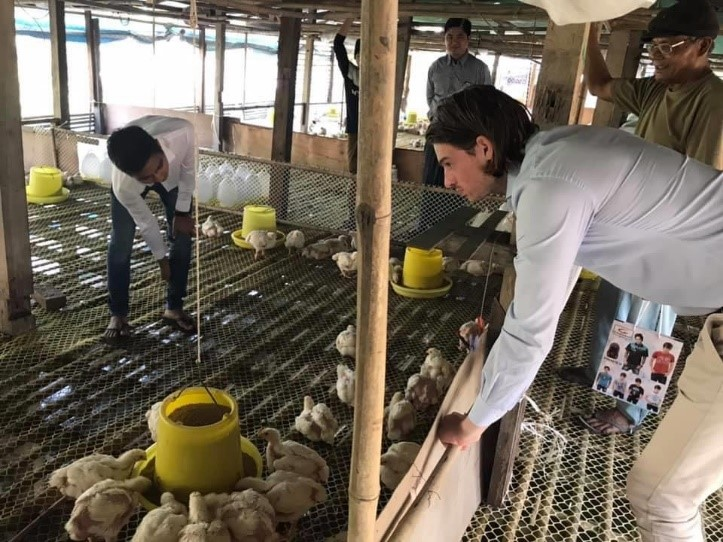 Technical Support to Myanmar Local Broiler Farms 4